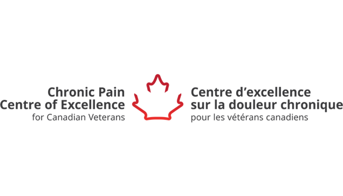 Chronic Pain Centre of Excellence